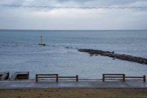 蕭然とした雨晴海岸