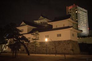 闇に浮かぶ富山城