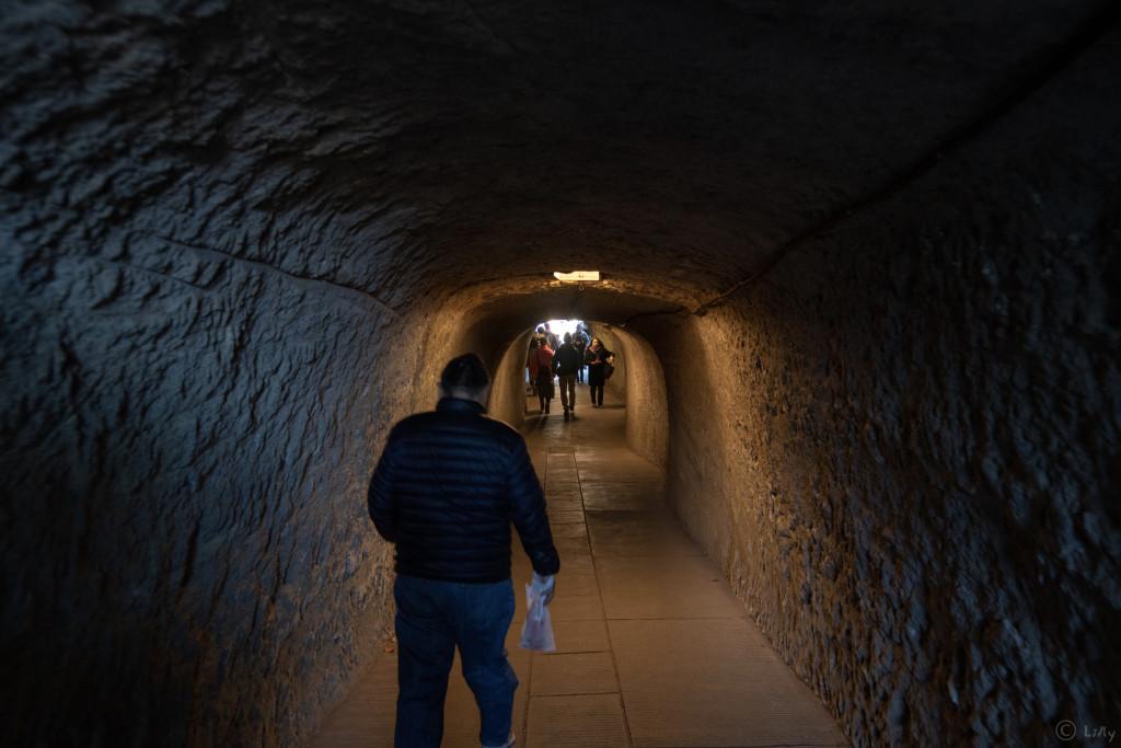 毎年恒例の弁財天入口の洞穴